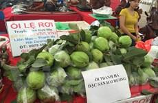 Ổi Lệ Rơi thành đặc sản Hải Dương bày bán tại hội chợ AgroViet 2015