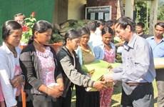 Hỗ trợ hơn 2.800 tấn gạo cứu đói dịp Tết Nguyên đán cho 4 tỉnh