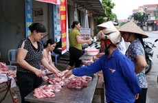 [Video] Người dân và tiểu thương lo lắng vì giá thịt lợn tăng cao