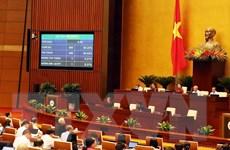 Phê chuẩn Công ước số 105: Việt Nam cam kết xóa bỏ lao động cưỡng bức