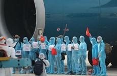 Đã đưa được hơn 3.000 lao động Việt Nam làm việc ở nước ngoài về nước