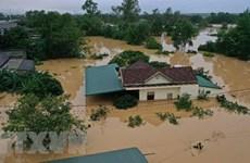 Hơn 10.000 công đoàn viên bị thiệt hại tài sản, nghỉ việc vì lũ lụt