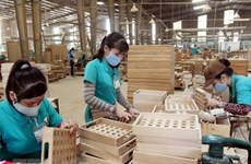 Nhu cầu tuyển dụng cuối năm: Sản xuất im ắng, tài chính vẫn tăng