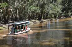Vườn quốc gia Tràm Chim chính thức trở thành di tích quốc gia