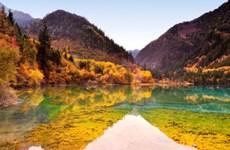 Khách đặt tour du lịch Cửu Trại Câu được đổi lịch trình tham quan