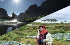Việt Nam có ba đại diện vào chung khảo Cuộc thi ảnh APEC 2017