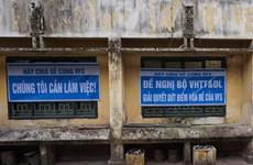 Nghệ sỹ Hãng Phim truyện Việt Nam: Mệt mỏi, hoang mang về tương lai