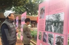 Hội Nhà văn Việt Nam không trao giải thưởng cho thơ, văn xuôi