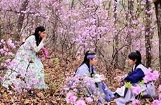 'Khi nhà vua yêu' và sự trở lại của cô nàng YoonA xinh đẹp