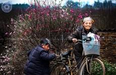 ''Tình yêu và cuộc sống Hà Nội'' qua góc nhìn của các nhiếp ảnh gia
