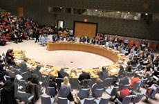 Khẳng định vị thế của Việt Nam thông qua hoạt động tại Hội đồng Bảo an