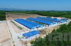 Ra mắt Dự án Tổ hợp chăn nuôi an toàn sinh học 4F tại Thừa Thiên Huế