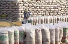 Việt Nam nhập khẩu gạo từ Ấn Độ không phải do thiếu lương thực