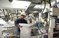 Xem xét ngừng xuất khẩu để tăng nguồn cung phân bón phục vụ trong nước