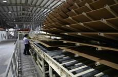 Ngăn chặn tình trạng đầu tư 'núp bóng' để ngành gỗ Việt phát triển