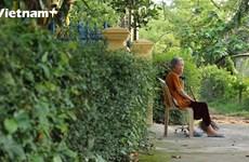 Khám phá Phước Tích: Ngôi làng có tuổi đời hơn 500 năm của cố đô Huế