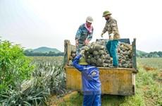 Việt Nam xuất khẩu nông lâm thuỷ sản đạt 17,5 tỷ USD trong 4 tháng