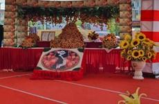 Vải thiều Bắc Giang ''đi Nhật'': Hái quả ngọt từ đầu tư bài bản