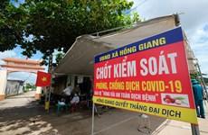 Bắc Giang: Giá vải thiều ổn định và sẽ tăng lên khi vào chính vụ