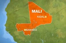 Lên án vụ tấn công lực lượng giữ gìn hòa bình ở Mali