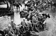 Hình ảnh con ngựa trong lịch sử các cuộc chiến tranh