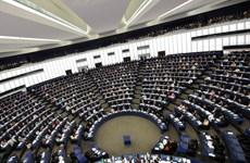 EP kêu gọi viện trợ để hỗ trợ phát triển quyền sở hữu