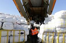 Syria sẵn sàng hợp tác với LHQ về cứu trợ nhân đạo