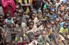 30 triệu trẻ em các nước châu Phi không được học hết tiểu học