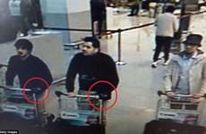 Hai kẻ đánh bom liều chết sân bay Brussels là anh em ruột