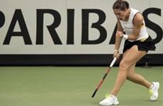 Người Đức nổi giận vì ban tổ chức Fed Cup phát quốc ca thời phát xít