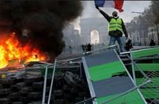 Pháp nhượng bộ người biểu tình, dừng tăng thuế nhiên liệu