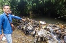 Toàn cảnh vụ đổ trộm dầu thải xuống đầu nguồn nước sạch Sông Đà