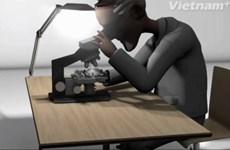 [Videographics] Bí ẩn khoa học đằng sau cảm xúc rung động đầu đời