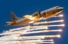Hãng Reuters: Mỹ chuẩn bị nới lỏng lệnh cấm vận vũ khí với Việt Nam