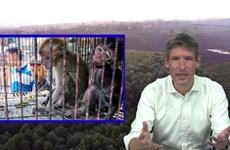 RapNews 47: Đại sứ Anh hát rap tiếng Việt để bảo vệ động vật hoang dã