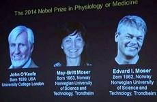 John O'Keefe, May-Britt Moser và Edvard I. Moser giành Nobel Y học