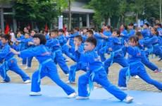 Tổ chức giáo dục FPT lập kỷ lục đồng diễn võ thuật lớn nhất Việt Nam