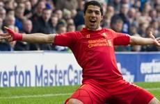 Ảnh động Luis Suarez ghi bàn cực đẹp vào lưới Everton