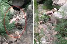 Trung Quốc xôn xao vì ảnh quái vật Gollum gần Trường thành