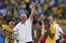 Huấn luyện viên Scolari đang đánh lạc hướng dư luận Brazil