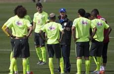 Scolari đang đứng trước cơ hội lịch sử hai lần vô địch thế giới