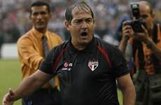Huyền thoại Zico tiến cử người thay Scolari dẫn dắt tuyển Brazil