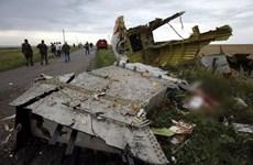 Tình báo Mỹ: Ly khai Ukraine đã bắn nhầm máy bay MH17 vì lỗi radar