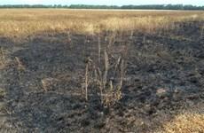 Báo Anh tìm ra địa điểm nghi đã bắn tên lửa vào chuyến bay MH17