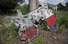 Một thủ lĩnh ly khai tố quân Ukraine đã gài bẫy phe này bắn máy bay