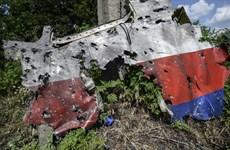 Những cột mốc chính trong vụ chuyến bay MH17 rơi ở Ukraine