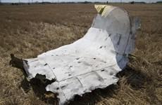 Những hình ảnh chứng minh MH17 đã bị bắn bằng tên lửa