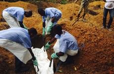 Đến lượt Nigeria ban bố tình trạng khẩn cấp do dịch Ebola