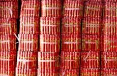 Trung Quốc: Nổ nhà máy sản xuất pháo hoa, 15 người chết