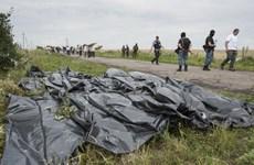 Xuất hiện video chưa từng công bố về MH17 khiến Australia bị sốc